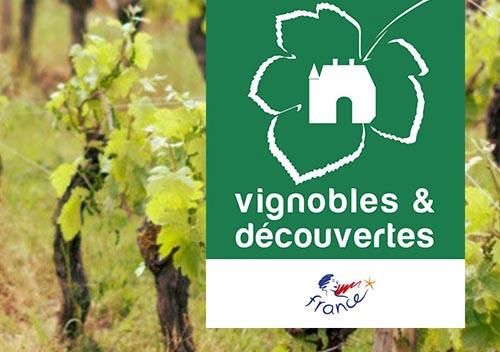 Vignobles & découverte